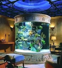 House Fish Tanks Amazing Fish Tank I Wish Large House Fish Tanks