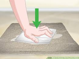 image titled remove old dog urine stains step 9