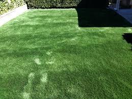 fake grass carpet. Best Artificial Grass Poteet Texas Dog Pound Backyard Landscape Fake . Carpet