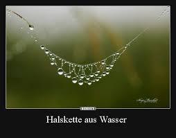 Halskette Aus Wasser Lustige Bilder Sprüche Witze Echt Lustig