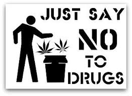 drug quotes drugs and quotes on pinterest say no to drugs  say no to drugs