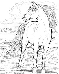 Small Picture 77 best Horses Coloring pages images on Pinterest Coloring books