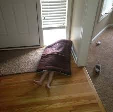 Image result for fail at hiding curtain kids