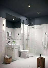 Type of paint for bathrooms Grey Type Of Paint For Bathrooms Type Of Paint For Bathroom Ceiling Bathroom Inspiration Type Paint Bathroom Type Of Paint For Bathrooms Neongreyco Type Of Paint For Bathrooms Paint Sheen For Bathroom Large Size Of