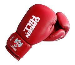 BGS-2271F <b>Боксерские перчатки</b> SUPER одобренные ...