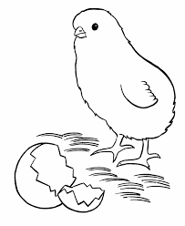 Easter Chick Coloring Pages Getcoloringpagescom