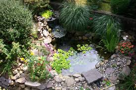 Small Picture pond designs and important things to consider interior pond ideas
