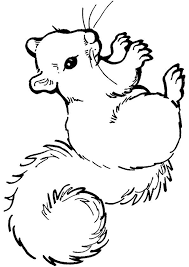 Print Coloring Image Bw Images To Color Squirrel Coloring Page
