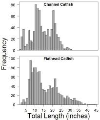 Lower James River Catfish Study South Dakota Game Fish