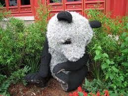 disney flower and garden. The Flower Panda From China Pavilion At Epcot And Garden Show Disney