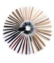 Color Chart Human Hair Color Ring