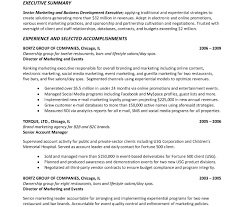 Resume Summary Examples How To Write Experience Summary Project Manager Resume General Do 78