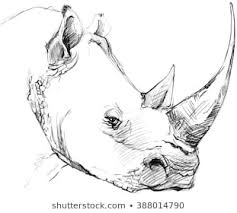 1000 Sketch Animal Stock Images Photos Vectors