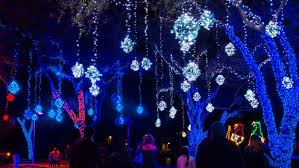 about moody garden festival of lights