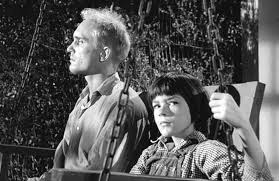 "how are tom robinson and boo radley in to kill a mockingbird  how are tom robinson and boo radley in ""to kill a mockingbird"" similar are they the mockingbirds"