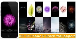 ios 8 iphone 6 stock