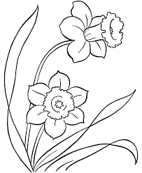 flower page printable coloring sheets coloring pages free printable easter daffodils flowers coloring page
