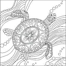 Baby Sea Turtle Coloring Page Pictures Ninja Pages Teenage Turtles