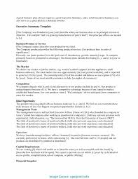 executive summary example business special startup executive summary template executive summary