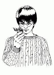 25 Bladeren Harry Potter En De Steen Der Wijzen Game Download