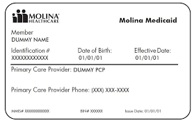example cal card for molina health plan