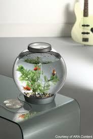office fish. 05070201.jpg Office Fish S