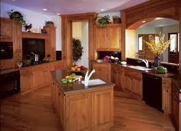 Kitchens With Black Appliances Black Appliances Kitchen Ideas