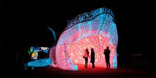 Moonlight Forest Lantern Art Festival At The Los Angeles