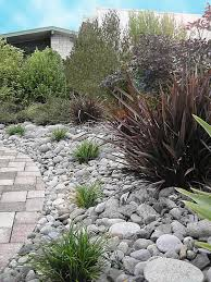 Small Picture low maintenance garden nz Google Search desert garden