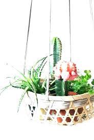 plant holder ideas best hanging plants indoor plant holder ideas on hangers outdoor wall hold indoor plant holder ideas hanging plant holders best indoor
