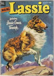 Image result for images of lassie