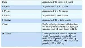 Baby Weight Chart By Week In Kg Beagle Puppy Growth Chart Newborn Baby Development Week By