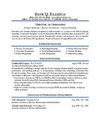 Director Resume Examples Beauteous Operations Director Resume Example