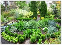 Small Picture Top 25 best Garden Design Layout Garden Designs Layouts PDF
