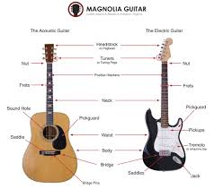 diagram of guitar diagram image wiring diagram guitar diagram guitar auto wiring diagram schematic on diagram of guitar