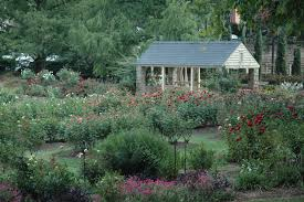 the raleigh rose garden enjoys excellent stewardship and care from the city of raleigh parks recreation and cultural resources department