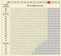 Bmi Chart And Information Triple Creek Horse Outfit