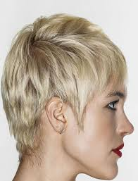 Trend Pixie Haircuts For Thick Hair 2019 Haircuts Pixie Thick