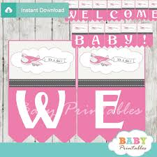 Pink Banners Pink Airplane Baby Shower Banner D166