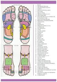 Top Of Foot Reflex Chart Free Foot Reflexology Charts 35 Free Printables Word Pdf