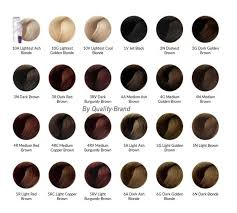 Chi Tone And Shine Color Chart Chi Ionic Permanent Shine Hair Color Chart Google Search