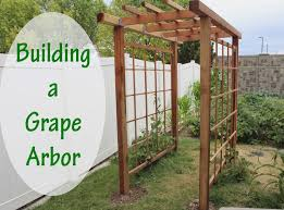 Building An Arbor New How to Build A Grape Arbor Unac