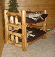 best dog bunk beds