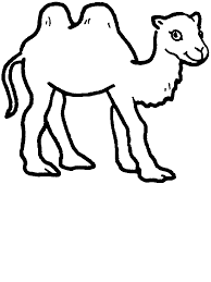 Small Picture Camels For ColoringForPrintable Coloring Pages Free Download