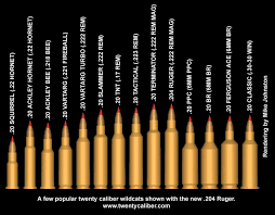 Rifle Bullet Size Chart Comparison 16 All Inclusive Caliber Rounds Chart