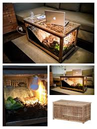 tortoise lighting. IKEA HOL Storage Table Hacked To Lovely Hermann\u0027s Tortoises. #IKEA #HACK #DIY Tortoise Lighting T