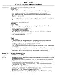 Typist Resume Samples Velvet Jobs