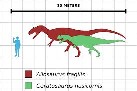 Dinosaur Sizes Comparison Chart File Allosaurus Ceratosaurus Comparison Chart Svg