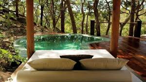 luxury tree house resort. Pretty Beach House - Beach, NSW, Australia 5 Star Luxury Guesthouse Tree Resort