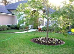 Small Picture Simple Small Garden Ideas Affordable Narrow Backyard Ideas With
